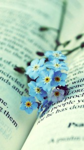 Blue-Flowers-On-The-Book