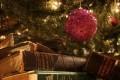 Sondaggio - Un libro sotto l'albero!