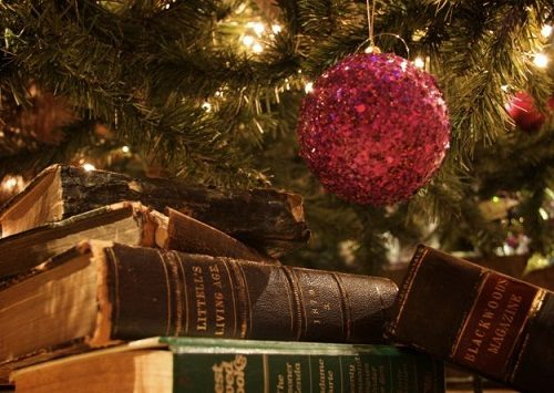 Sondaggio – Un libro sotto l'albero!