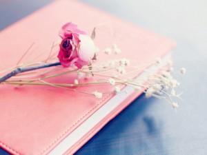sconti letteratura rosa