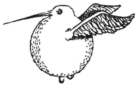 golden-snidget-il-quidditch-attraverso-i-secoli